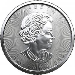 2021 Canadian Silver Maples