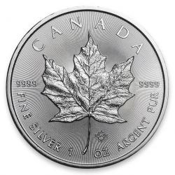 Canadian Silver Maples & Related
